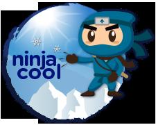 Ninja Cool Services